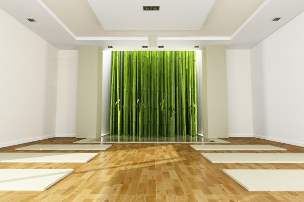 Bamboo flooring is eco-friendly and adds a lot of value to the natural eco space. #bambooflooring