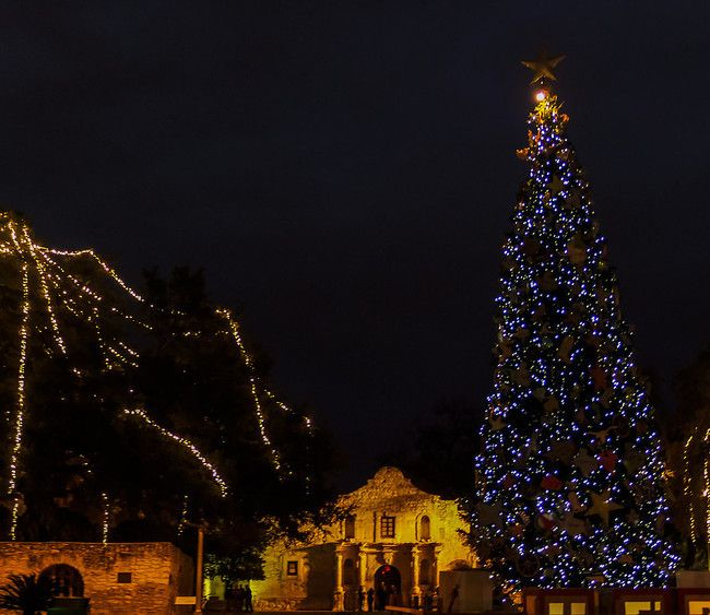 Christmas Tree San Antonio: 17 Best Images About Texas On Pinterest