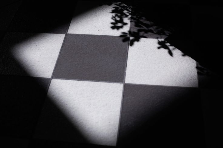 Light and shadow  #shadow