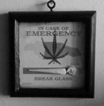 Dopeness!Totally making one for my smoke room now