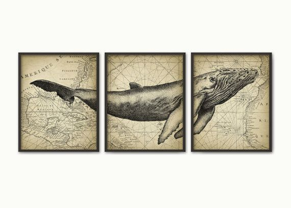 Humpback Whale Wall Art Poster Set Of 3 Whale by QuantumPrints