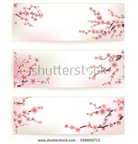 Sakura, Cherry Blossoming Tree Background Illustration. Set of Beautiful Floral Banners, Greeting cards, Wedding Invitations, Backdrops, Vouchers. EPS 10 vector file included