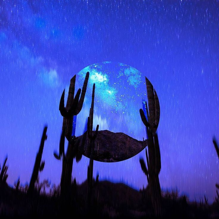 Blue Cactus . . #graphicdesign #aesthetic #photoshop #art #digital #color #circle #displace #abstract #sky #skies #night #cactus #blue #stars #beautiful #photo #visual