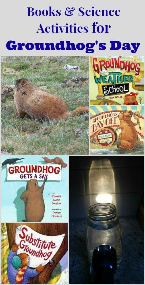 10 Groundhog Day books and science activities for kids! #preschool #elementary #groundhogday