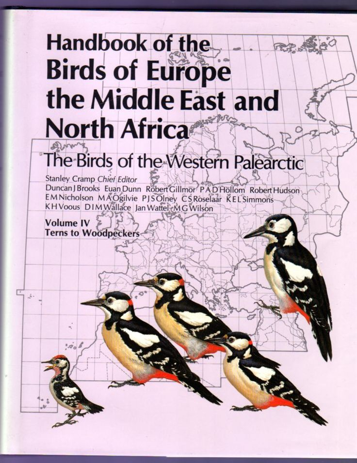 Volume 4 - Handbook of the Birds of Europe, the Middle East, and North Africa : The Birds of the Western Palearctic:Volume IV Terns to Woodpeckers, Cramp, Stanley [chief editor] PRIMA EDIZIONE
