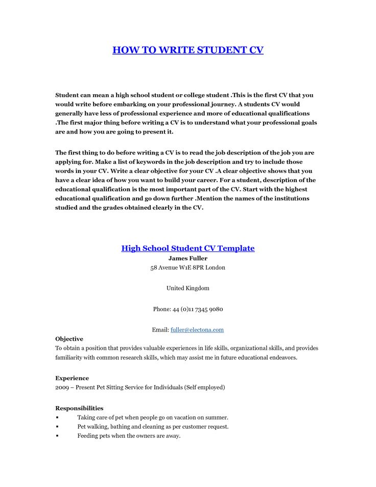 Student Cv Template. How To Prepare Curriculum Vitae Sample 51