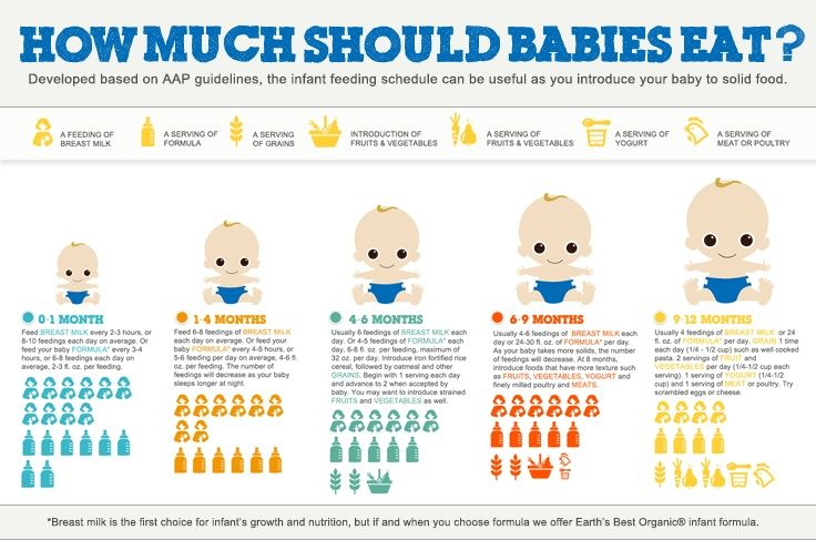 How much should a newborn baby eat