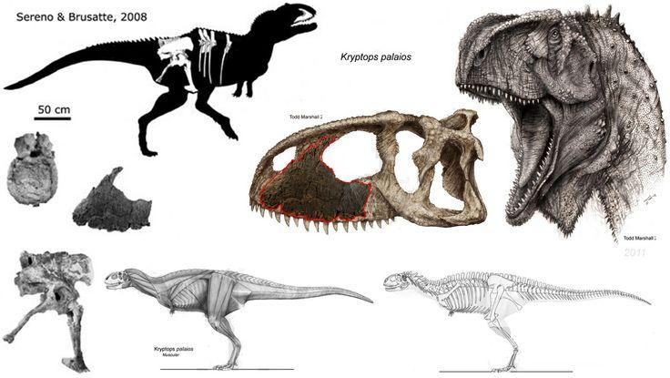 Kryptos palaios http://chronicle.uchicago.edu/080221/sereno.shtml http://news.xinhuanet.com/english/2008-02/15/content_7609912.htm http://www.cosmosmagazine.com/news/odd-predatory-dinos-share-features-with-hyena-and-shark/