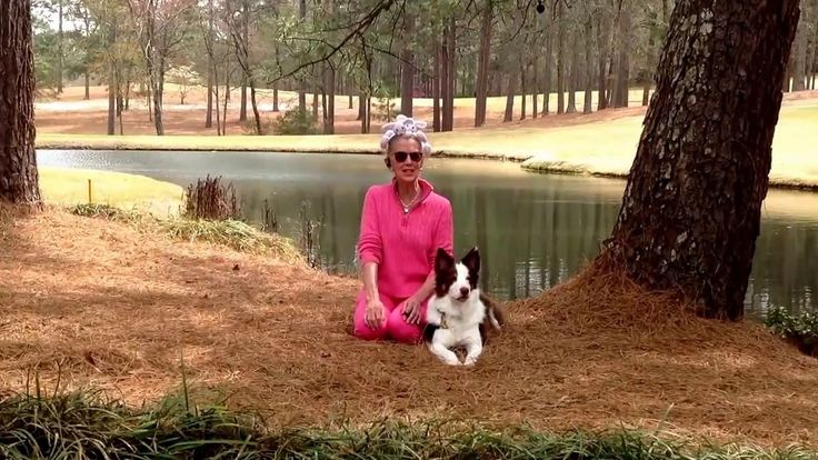 Animal Medium Brent Atwater say you can bury or spread living energy in today's episode of the Animal Intuitive show about Pet Animal memorials and Pet ashes- animal cremation Subscribe - ASK  YOUR questions in Brent's FB Pet group or on her website www.BrentAtwater.com ***  https://www.facebook.com/#!/groups/59877299590/ Join Brent on Facebook, Pinterest, Periscope, Instagram & Twitter #animalmedium, #petTV, #brentatwater, #unscripted  #reality
