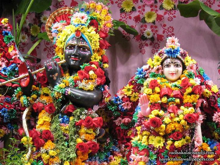 http://harekrishnawallpapers.com/sri-sri-radha-kalachanda-close-up-iskcon-dallas-wallpaper-001/