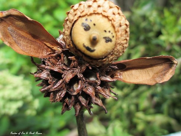 Make your own garden fairies! (Garden of Len & Barb Rosen)