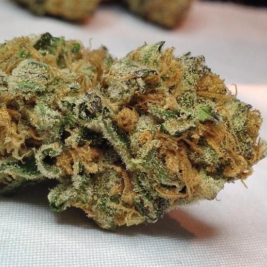 Girl Scout Cookies Marijuana Strain Review And Pictures