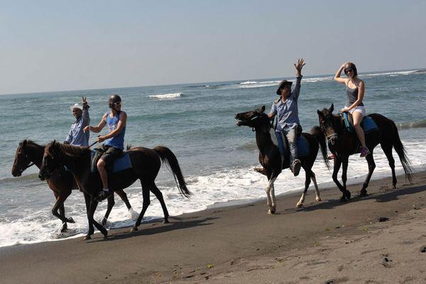 Dua wisatawan bersama pemandu berwisata petualang dengan menunggang kuda di sepanjang Pantai Saba, Gianyar, Bali, Rabu (5/11).