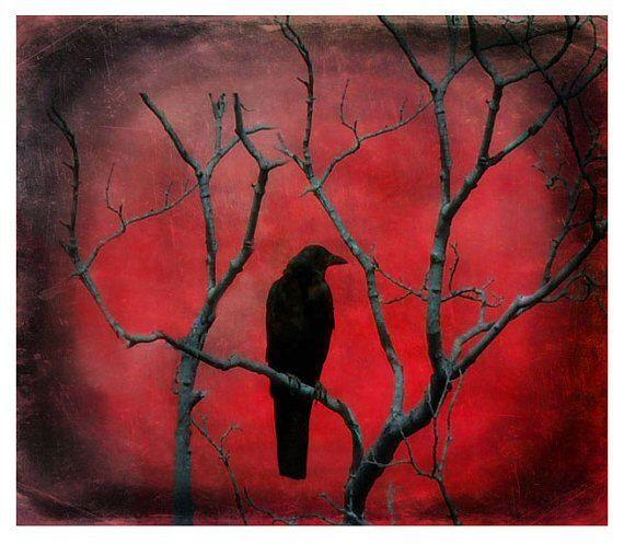 Red Metallic, Crow Picture, Gothic Decor, Gothic Crow, Crimson, Blackbird, Gothic Art - Red Vision on Etsy, $17.00