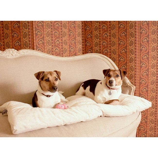 48 best dog crates covers cushions images on pinterest for Best dog door for winter