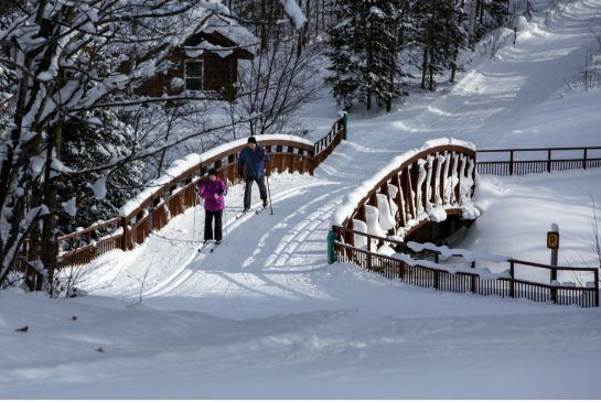 Cross country skiers at Arrowhead Provincial Park. The park has skiing, snowshoeing, tubing and boasts the longest man-made ice trail in Ontario.