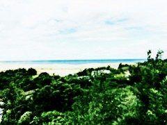 久しぶりの鳥取砂丘です 相変わらず大きく綺麗です_  横には砂の美術館もあるので是非鳥取に来られた際は寄ってください  砂の美術館 http://ift.tt/1b6WVjN  #鳥取 #砂丘 #砂 #美術館 tags[鳥取県]