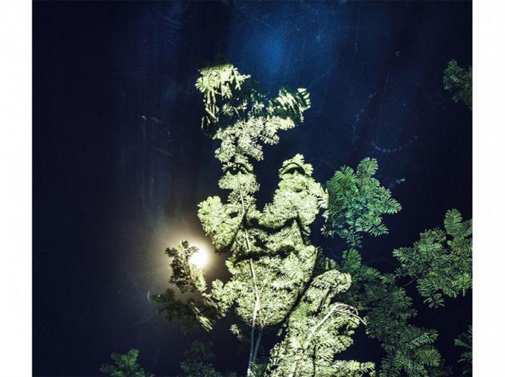 À la nuit tombée, le photographe projetait ses portraits de Suruis sur des arbres, repérés au préalable lors de promenades avec la tribu.