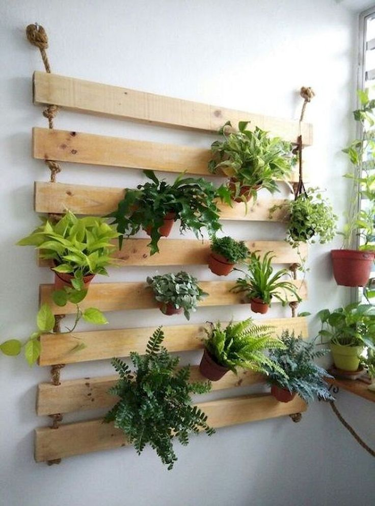 50 Best Indoor Garden For Apartment Design Ideas And Remodel