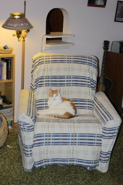 The Eco Cat Lady Speaks: Quick and Easy No-Sew Slip Cover for recliner using flat & fitted  twin sheet set