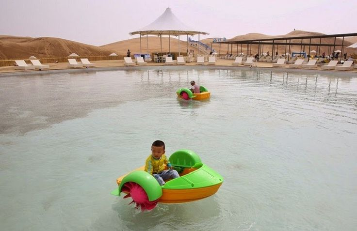 Desert Lotus Hotel Resort and Spa Pool