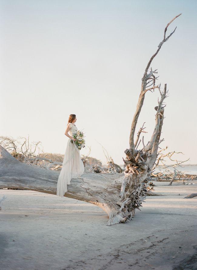 Intimate Wedding On Driftwood Beach In Jekyll Island In 2020 Romantic Beach Wedding Driftwood Wedding Beach Bridal