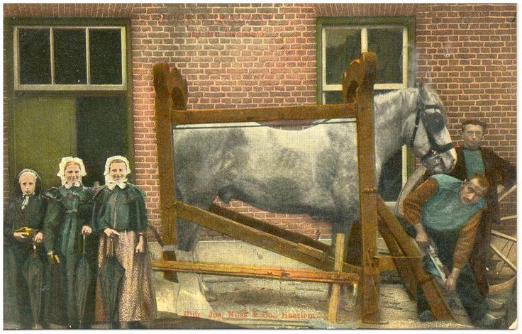 Asten - Het verzorgen van een hoef van het paard door de hoefsmid Gerrit van Eersel. Met geheel rechts Driek Berkers van het kasteel, de eigenaar van het paard Auteur: Nuss, Josephus Maria Hubertus (uitgever); - 1906
