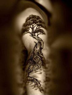 Tree tattoos meaning, tree of life, family tree, palm tree, willow tree, pine tree, oak tree, dead tree, cherry tree, bonsai tree, small tree tattoo designs - Part 3