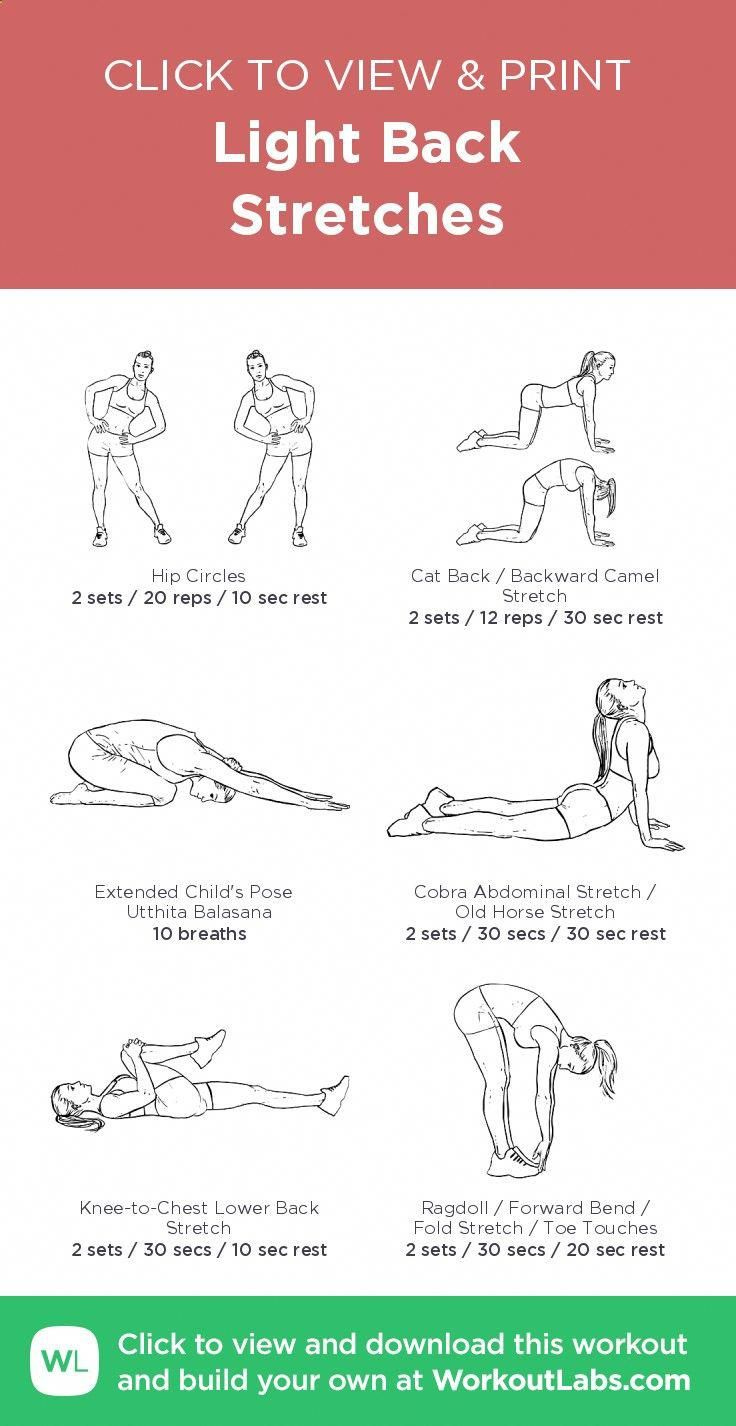 energy exercise fat fat loss foods insulin look lose weight metabolism muscle pounds stubborn fat sugars light back stretches click to  [ 736 x 1426 Pixel ]
