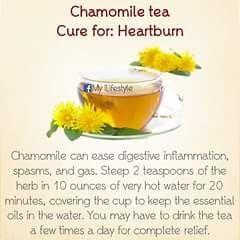 CHAMOMILE  TEA - CURE FOR HEARTBURN