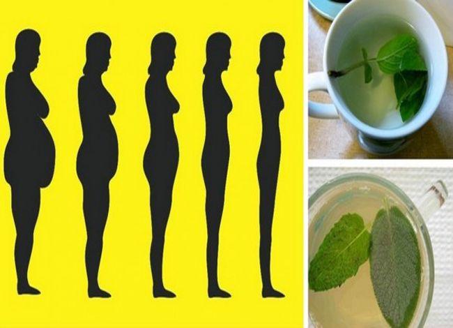 Как Сбросить Лишний Вес На Травах. Похудение на травах - рецепты и применение. Эффективные способы сбросить лишний вес