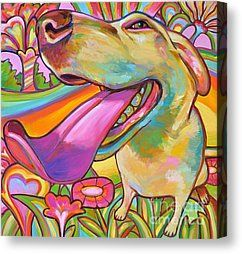 Trippy Dog Canvas Prints and Trippy Dog Canvas Art for Sale