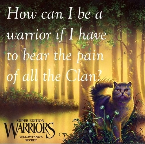 445 Best Images About Warriors Of The Clans On Pinterest
