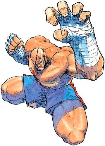 Sagat - Street Fighter Art