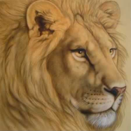 Joanna May  Oil on Canvas