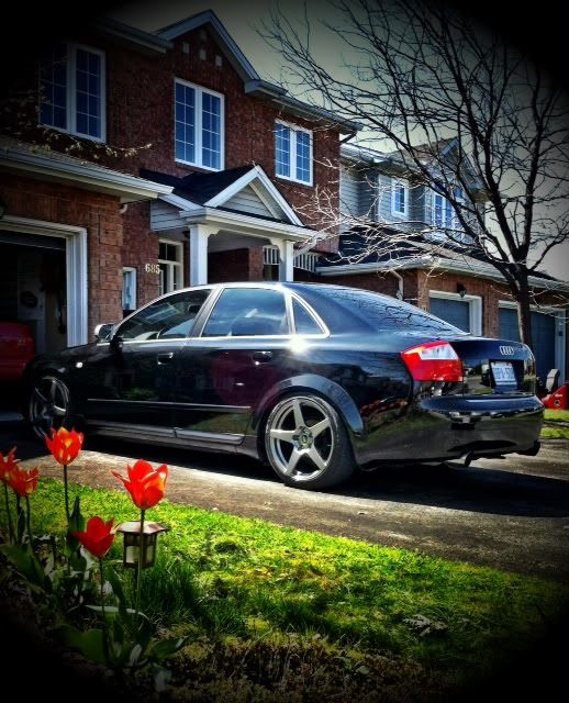 Random pic of your b6... - Page 20
