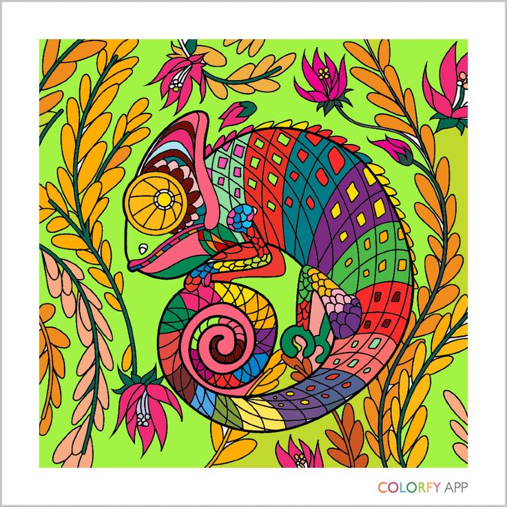 300 best Animals and Cats #colorfy images on Pinterest | Cats, App ...