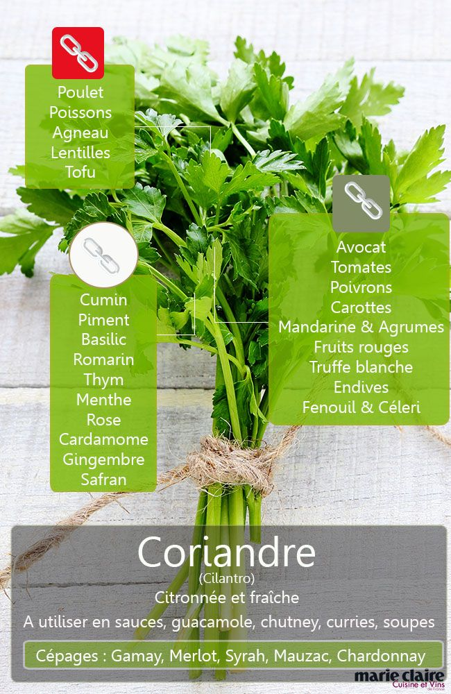 Cilantro is another name for coriander which is used not to confuse the seeds and grass.  In appearance, it resembles parsley, but it has a lemony flavor and exotic easily recognizable.  Discover all it accompanies the flavors harmoniously. The site has pictures showing different uses for cilantro
