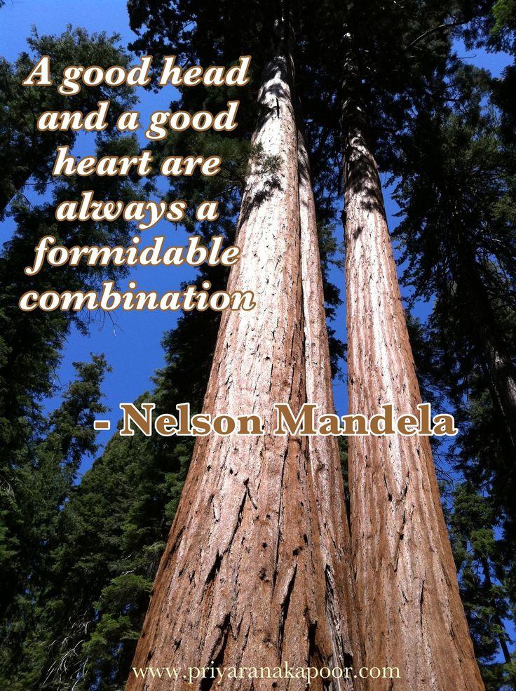 Nelson Mandela - Good Head and Heart