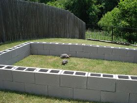 Loren & Sarah: Outdoor Tortoise Habitat
