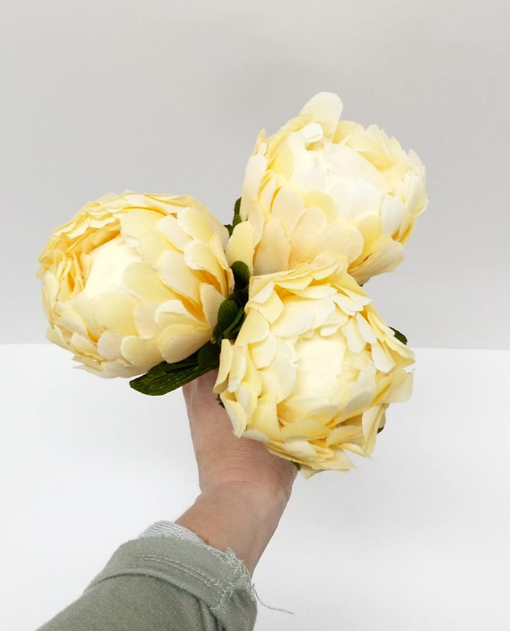 BUXY BLOOMS handmade Protea Crepe Paper Flowers, Crepe Paper Flower Bouquet, Paper Flowers, Decoration, Wedding, Nursery, Mother's Day by buxyblooms on Etsy