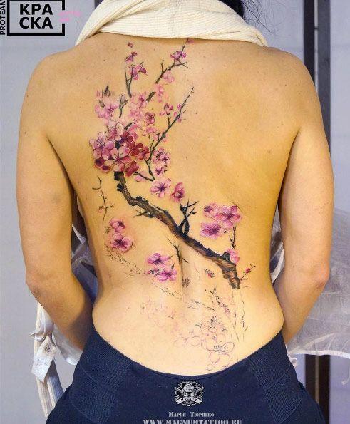 Cherry blossom tree by Marya Tyurpeko
