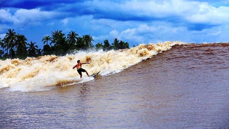 Kampar River Tourism, Indonesia - Next Trip Tourism
