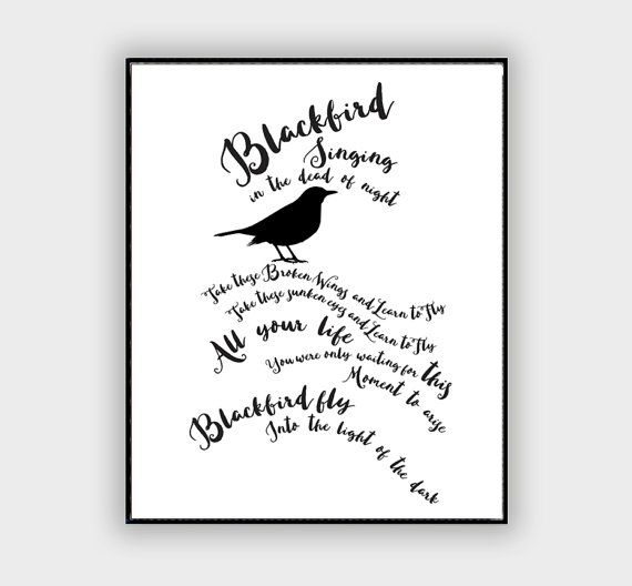 The Beatles Blackbird Song Lyric Typography Quote Home and Office Decoration Motivational Poster Design Wall Art Music Poster   Print size and pricing
