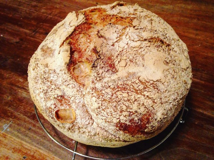 That no-knead bread is EVERYTHING you dreamed it could be.
