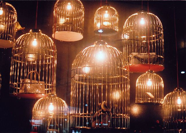 A great use for bird cages.