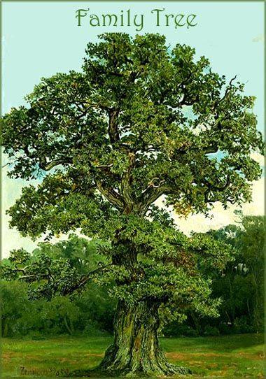 Large Blank Family Tree Chart | ... family tree from free family tree templates. Big oak family tree