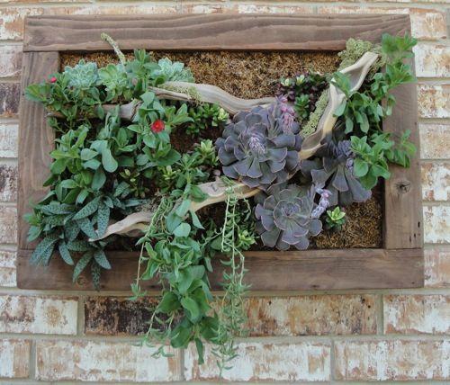 Vertical Garden My Work Pinterest Vertical Succulent
