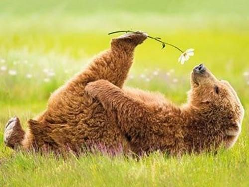 Stop and smell the flowers♡