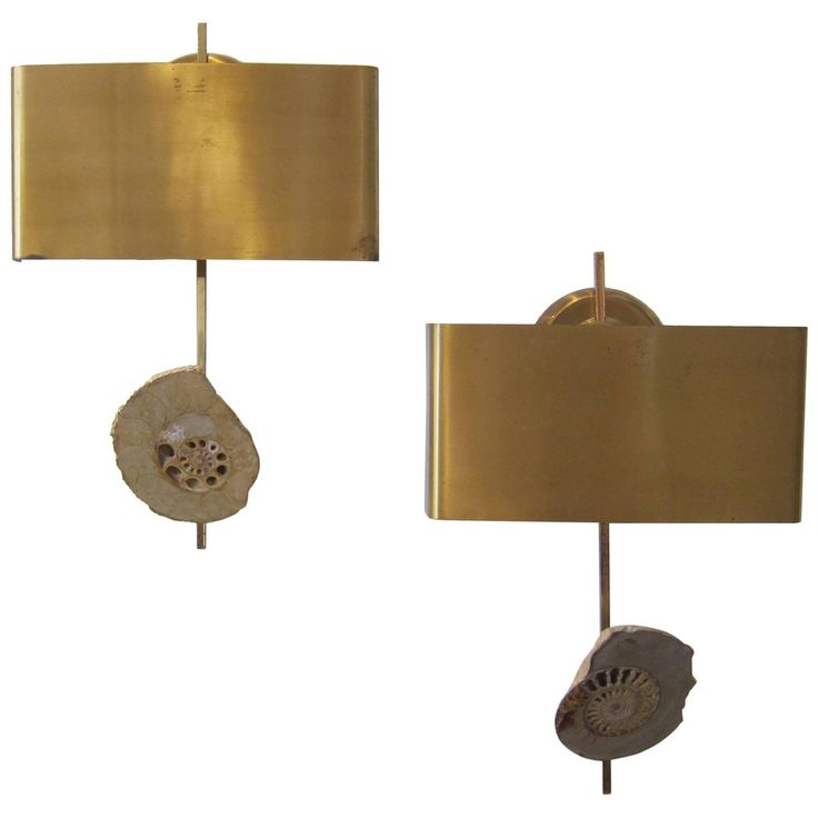 Pair of Ammonite Fossil and Brass Wall Lights, France 1970s | From a unique collection of antique and modern wall lights and sconces at https://www.1stdibs.com/furniture/lighting/sconces-wall-lights/